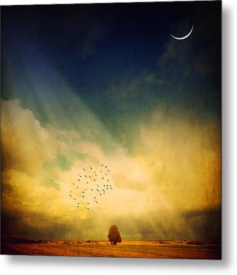 Metal Print featuring the photograph Echo Of A Sigh by Philippe Sainte-Laudy