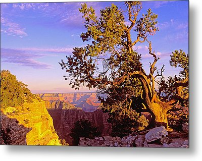 Edge Of Canyon Metal Print by Alan Lenk