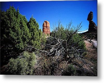 Edge Of Life Arches Metal Print by Lawrence Christopher