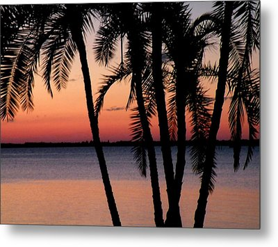 Metal Print featuring the photograph Edison Sunset by Rosalie Scanlon