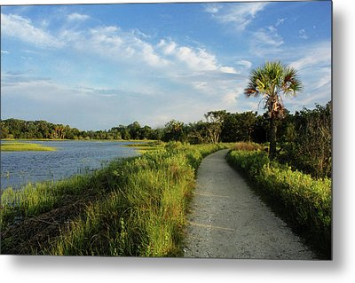 Metal Print featuring the photograph Edisto by Jessica Brawley