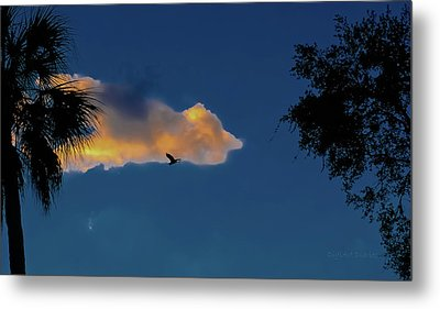 Egressing Egret Metal Print by DigiArt Diaries by Vicky B Fuller