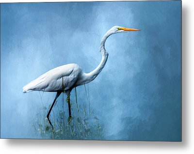 Egret Metal Print by Cyndy Doty