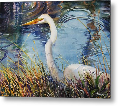 Egret In Cameron Marsh Metal Print by Sue Zimmermann