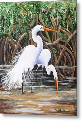 Egrets And Mangroves Metal Print