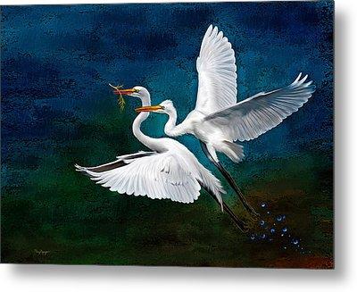 Egrets Metal Print
