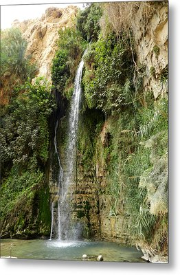 Ein Gedi Nature Reserve Metal Print by Mis fotos de viajes