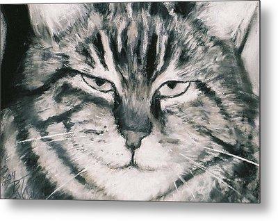 El Gato Metal Print by Billie Colson