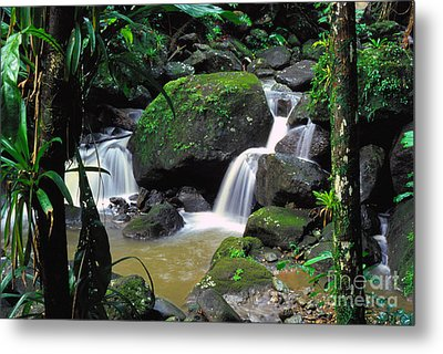 El Yunque National Forest Waterfall Metal Print by Thomas R Fletcher