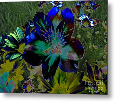 Metal Print featuring the photograph Electric Lily by Greg Patzer