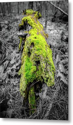 Electro Log Metal Print by Andrew Crispi