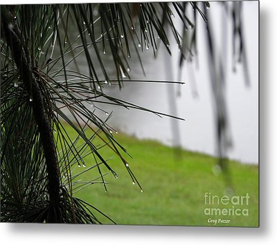 Metal Print featuring the photograph Elements by Greg Patzer