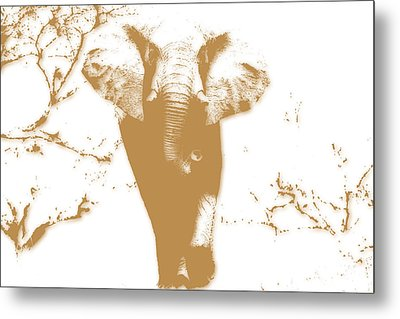 Elephant 2 Metal Print by Joe Hamilton