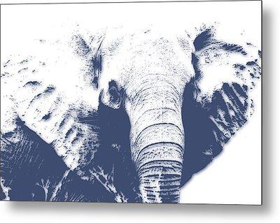 Elephant 4 Metal Print by Joe Hamilton