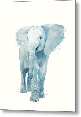 Elephant Metal Print by Amy Hamilton