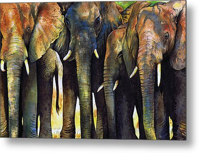 Elephant Herd Metal Print by Paul Dene Marlor