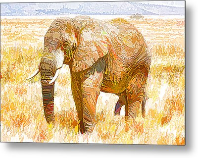 Elephant In National Park Metal Print by Lanjee Chee