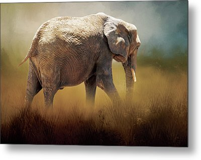 Metal Print featuring the photograph Elephant In The Mist by David and Carol Kelly