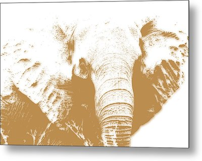 Elephant Metal Print by Joe Hamilton