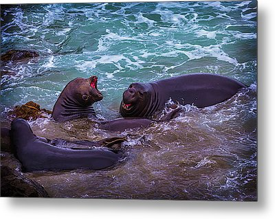 Elephant Seals Fighting In The Surf Metal Print by Garry Gay