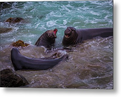 Elephant Seals In The Surf Metal Print by Garry Gay