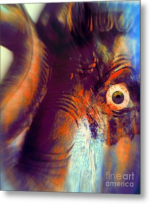 Elephant Zoom Metal Print