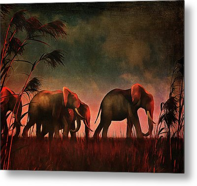 Elephants Walking Together Metal Print