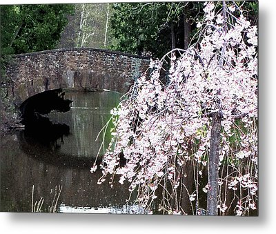 Elizabeth Bridge And Cherry Blossoms Metal Print by Leonard Rosenfield