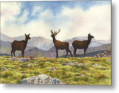 Metal Print featuring the painting Elk In The Evening by Anne Gifford