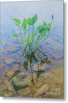 Ellie's Touch Metal Print by Pamela Clements