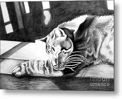 Elmer The Cat Metal Print by Genevieve Esson