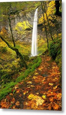Elowah Autumn Trail Metal Print by Mike  Dawson