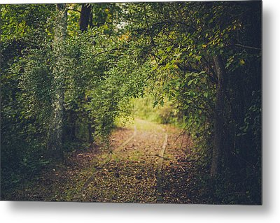 Embrace The Woods Metal Print