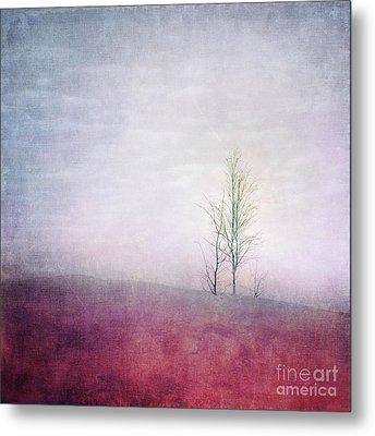 Embracing Solitude Metal Print by Priska Wettstein