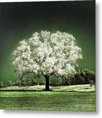 Emerald Meadow Square Metal Print