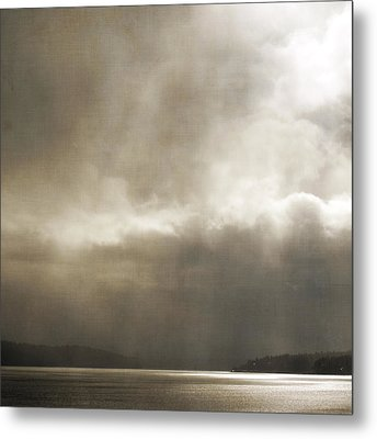 Emerging Light Metal Print by Sally Banfill