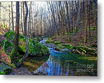 Emory Gap Branch Metal Print