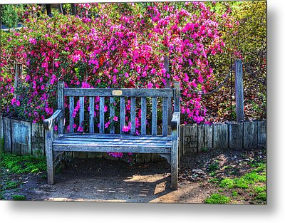 Metal Print featuring the photograph Empty Bench by Richard Stephen