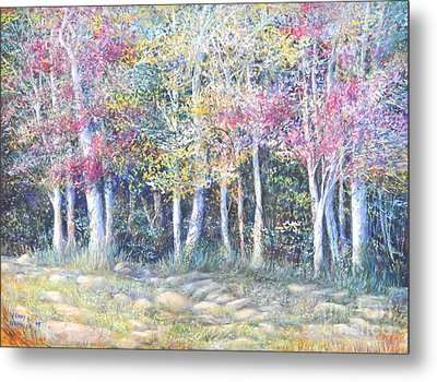 Enchanced Tree Pageant Metal Print by Penny Neimiller
