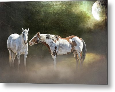 Metal Print featuring the photograph Enchanted Evening by Debby Herold