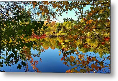 Metal Print featuring the photograph Enchanted Fall by Valentino Visentini