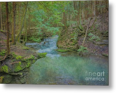 Metal Print featuring the digital art Enchanted Forest One by Randy Steele