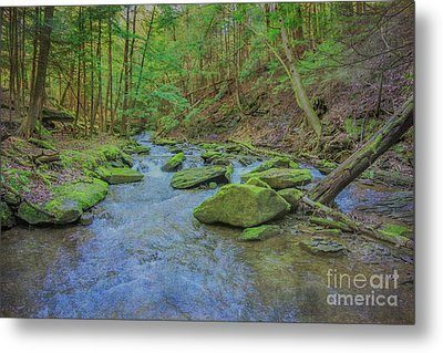 Metal Print featuring the digital art Enchanted Forest Three by Randy Steele