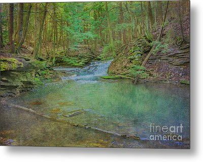 Metal Print featuring the digital art Enchanted Forest Two by Randy Steele