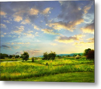 Enchanted Valley Metal Print by Jessica Jenney
