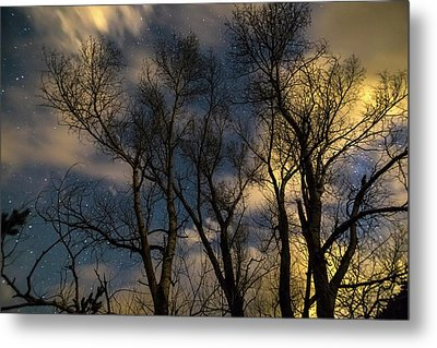 Metal Print featuring the photograph Enchanting Night by James BO Insogna