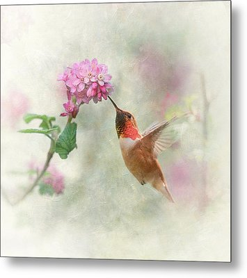 Metal Print featuring the photograph Enchantment In The Garden by Angie Vogel