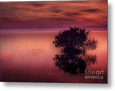 End Of Another Day Metal Print by Marvin Spates