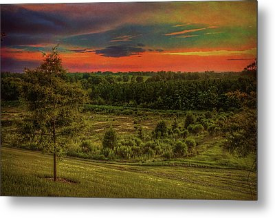 Metal Print featuring the photograph End Of Day by Lewis Mann