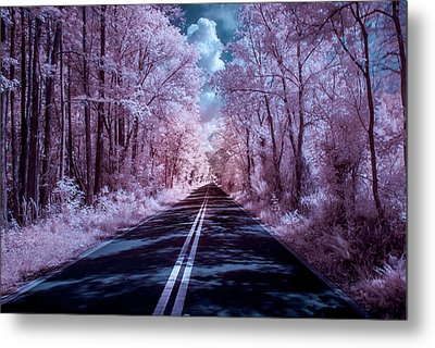 Metal Print featuring the photograph End Of The Road by Louis Ferreira